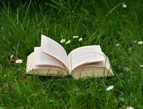 Best gardening resources for beginners : Books
